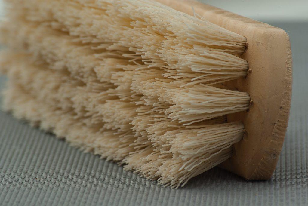 Tipps zum Reinigen von Hundebetten